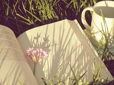 Resultado de imagen para libros en primavera