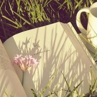 Cuatro libros relacionados con la primavera